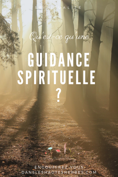 guidance voyance