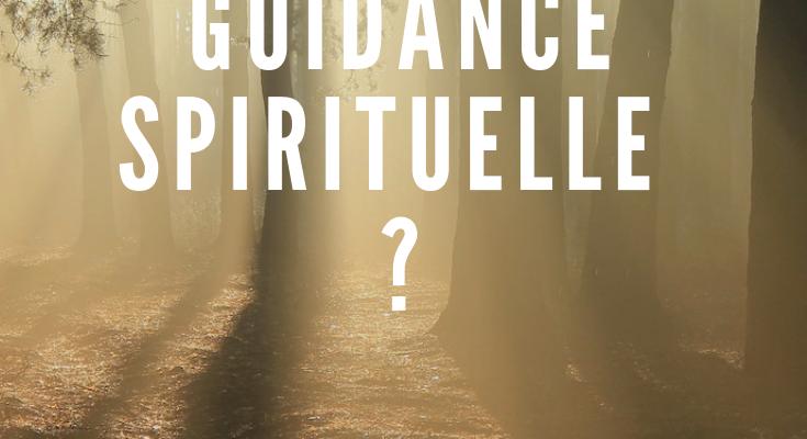 <h1>Qu'est-ce qu'une guidance ? </h1>